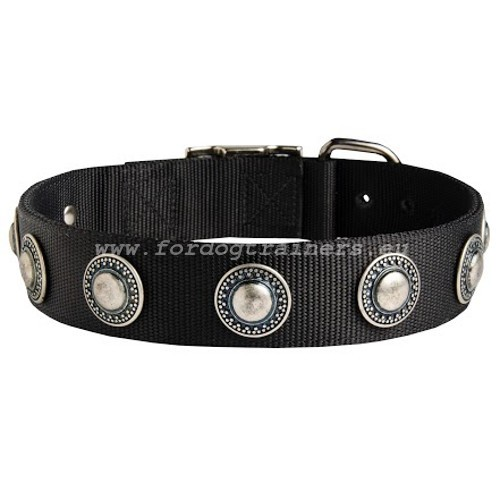 Resistant Nylon Dog Collar