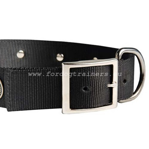 Walking Nylon Collar