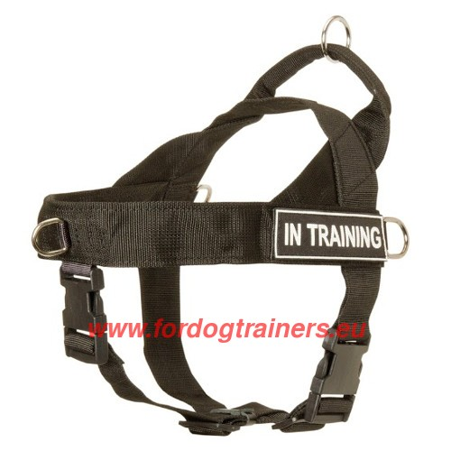 Nylon Harness with Wide Straps