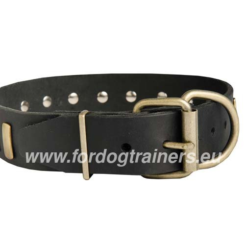 Metal Buckle and D-ring of the