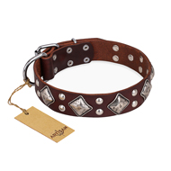 "Brown Leather Dog Collar ""King of Grace"" FDT Artisan"
