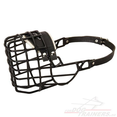 Big Dog Wire Muzzle Covered with Rubber ANTIFROST!!! - Click Image to Close